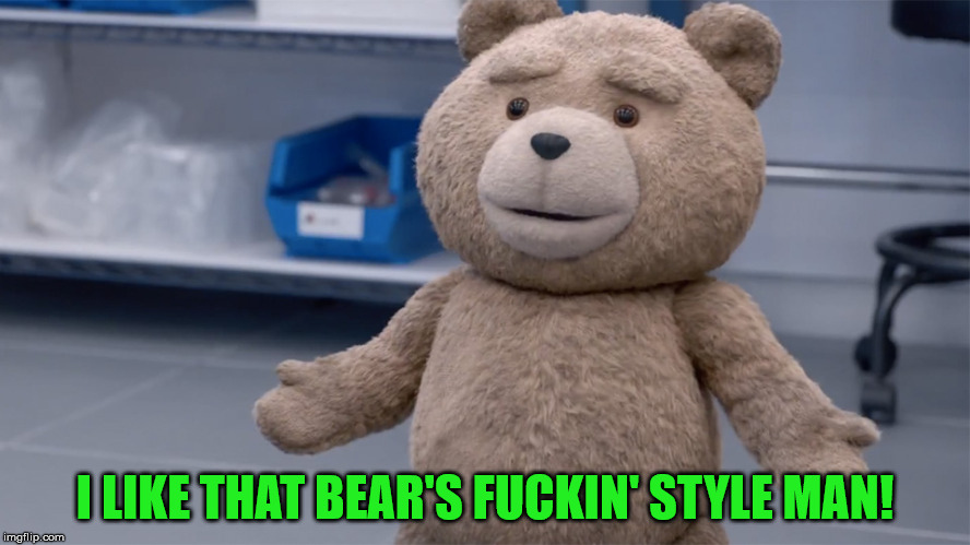 Ted Question | I LIKE THAT BEAR'S F**KIN' STYLE MAN! | image tagged in ted question | made w/ Imgflip meme maker