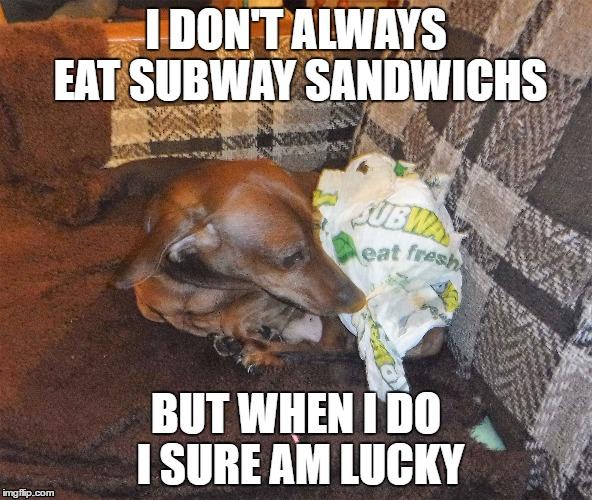 1jio1m subway memes imgflip