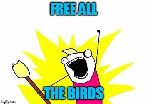 X All The Y Meme | FREE ALL THE BIRDS | image tagged in memes,x all the y | made w/ Imgflip meme maker