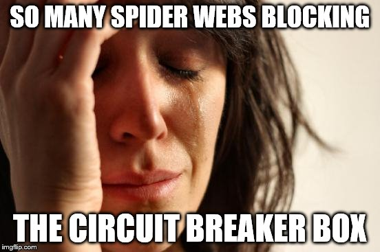First World Problems Meme | SO MANY SPIDER WEBS BLOCKING THE CIRCUIT BREAKER BOX | image tagged in memes,first world problems | made w/ Imgflip meme maker