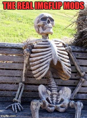 Waiting Skeleton Meme | THE REAL IMGFLIP MODS | image tagged in memes,waiting skeleton | made w/ Imgflip meme maker