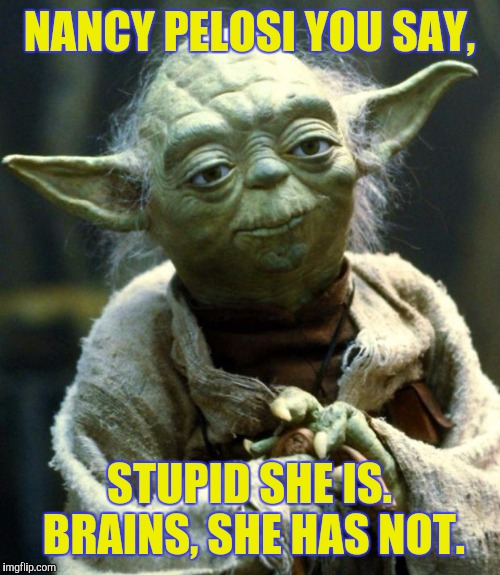 Star Wars Yoda Meme | NANCY PELOSI YOU SAY, STUPID SHE IS. BRAINS, SHE HAS NOT. | image tagged in memes,star wars yoda | made w/ Imgflip meme maker