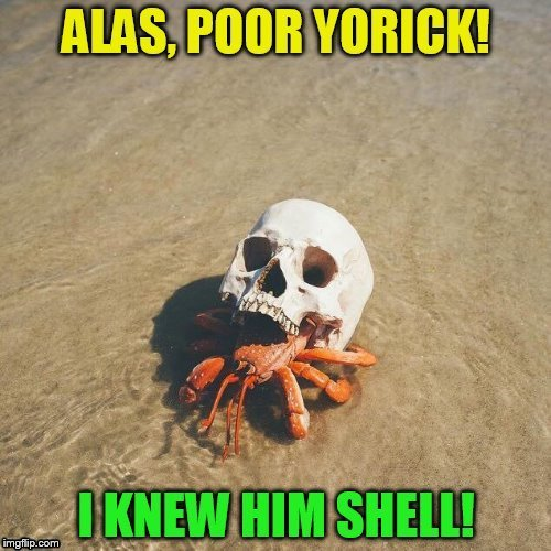 Shakespeare on the beach!  |  , . | image tagged in memes,shakespeare,hamlet,funny memes,literature,crab | made w/ Imgflip meme maker