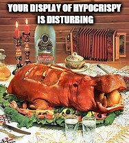 Hypocrispy on display | YOUR DISPLAY OF HYPOCRISPY IS DISTURBING | image tagged in hypocrisy,hippopotamus | made w/ Imgflip meme maker