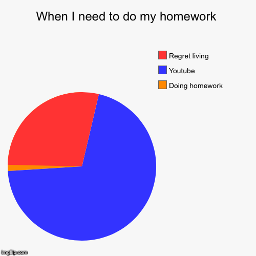 When I need to do my homework | Doing homework, Youtube, Regret living | image tagged in funny,pie charts | made w/ Imgflip pie chart maker