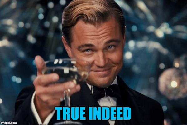 Leonardo Dicaprio Cheers Meme | TRUE INDEED | image tagged in memes,leonardo dicaprio cheers | made w/ Imgflip meme maker