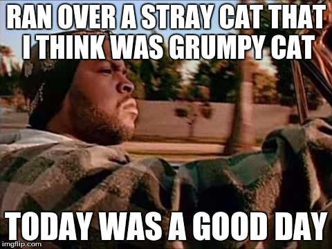RAN OVER A STRAY CAT THAT I THINK WAS GRUMPY CAT TODAY WAS A GOOD DAY | made w/ Imgflip meme maker