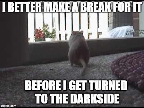I BETTER MAKE A BREAK FOR IT BEFORE I GET TURNED TO THE DARKSIDE | made w/ Imgflip meme maker