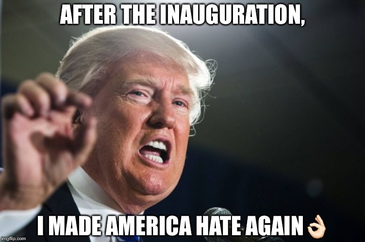 donald trump | AFTER THE INAUGURATION, I MADE AMERICA HATE AGAIN | image tagged in donald trump | made w/ Imgflip meme maker