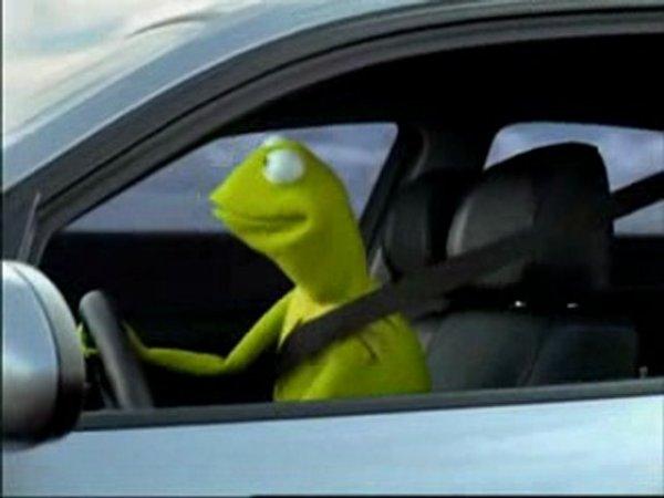 "Kermit The Frog Meme Driving ""kermit&qu..."