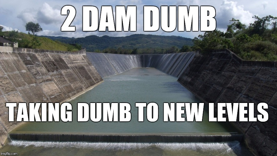 2 DAM DUMB TAKING DUMB TO NEW LEVELS | made w/ Imgflip meme maker