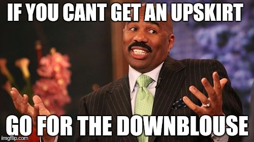 Steve Harvey Meme | IF YOU CANT GET AN UPSKIRT GO FOR THE DOWNBLOUSE | image tagged in memes,steve harvey | made w/ Imgflip meme maker