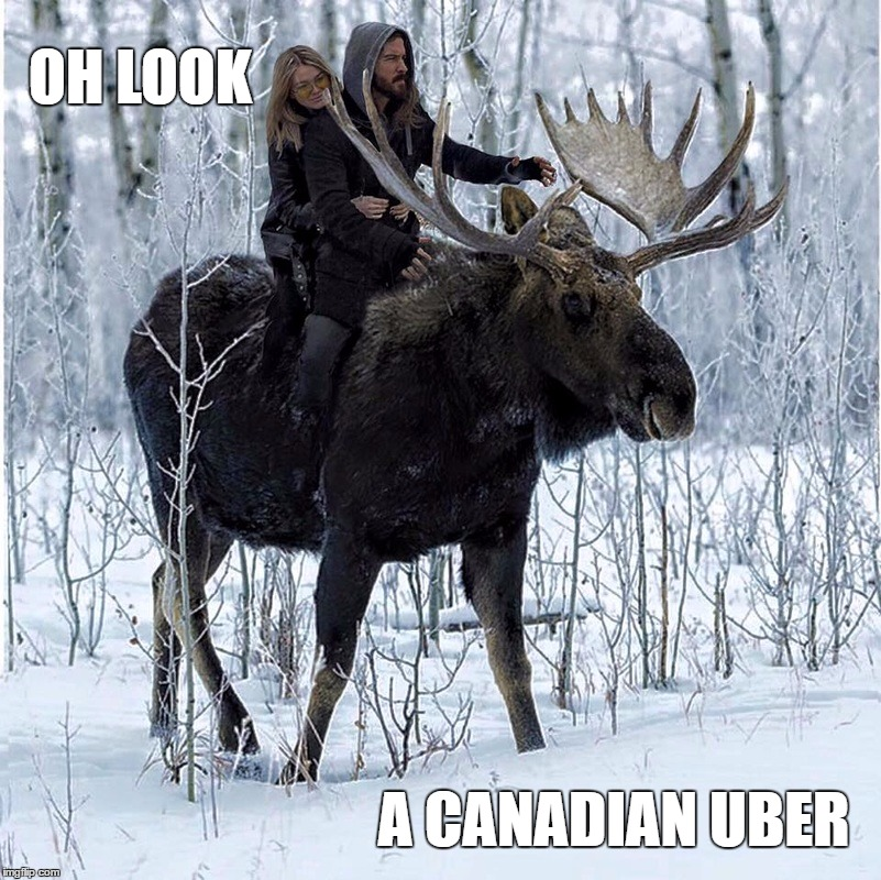 Canadian Uber | OH LOOK A CANADIAN UBER | image tagged in couple on moose,moose,canadian | made w/ Imgflip meme maker