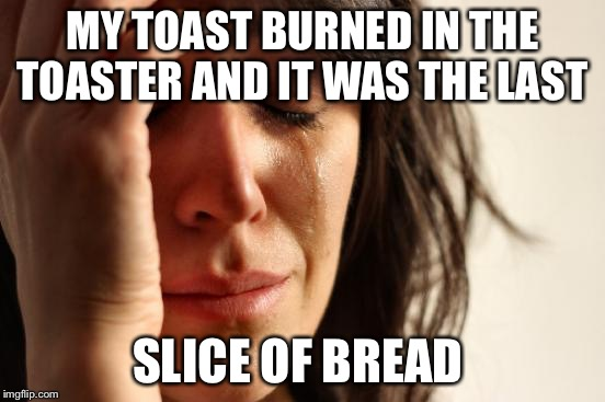 First World Problems Meme | MY TOAST BURNED IN THE TOASTER AND IT WAS THE LAST SLICE OF BREAD | image tagged in memes,first world problems | made w/ Imgflip meme maker