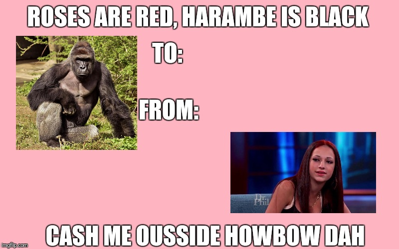 Roses Are Red Harambe Is Black Cash Me Ousside Howbow Dah Valentine Meme