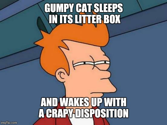 Futurama Fry Meme | GUMPY CAT SLEEPS IN ITS LITTER BOX AND WAKES UP WITH A CRAPY DISPOSITION | image tagged in memes,futurama fry | made w/ Imgflip meme maker