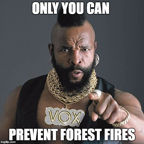 Mr T Pity The Fool Meme | ONLY YOU CAN PREVENT FOREST FIRES | image tagged in memes,mr t pity the fool | made w/ Imgflip meme maker