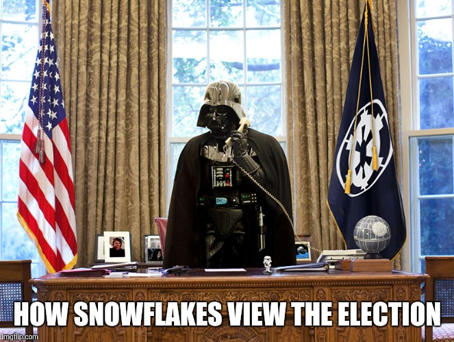 HOW SNOWFLAKES VIEW THE ELECTION | image tagged in trump | made w/ Imgflip meme maker