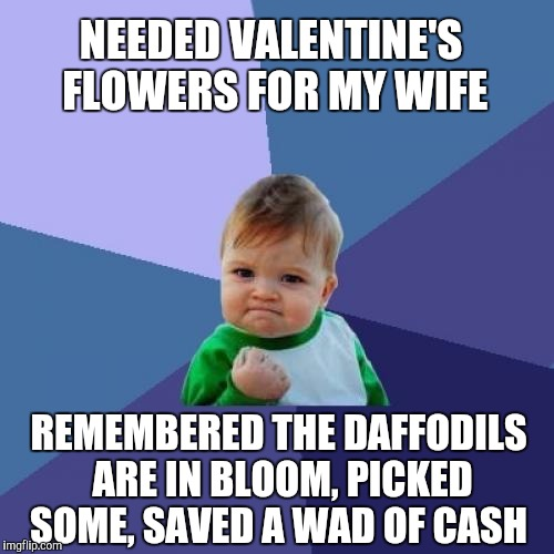 I totally did this today. Don't judge lol  | NEEDED VALENTINE'S FLOWERS FOR MY WIFE REMEMBERED THE DAFFODILS ARE IN BLOOM, PICKED SOME, SAVED A WAD OF CASH | image tagged in memes,success kid,valentines,flowers | made w/ Imgflip meme maker
