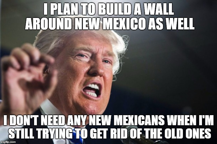 donald trump | I PLAN TO BUILD A WALL AROUND NEW MEXICO AS WELL I DON'T NEED ANY NEW MEXICANS WHEN I'M STILL TRYING TO GET RID OF THE OLD ONES | image tagged in donald trump | made w/ Imgflip meme maker