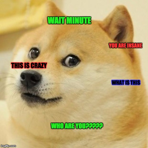 Doge | WAIT MINUTE WHO ARE YOU????? WHAT IS THIS THIS IS CRAZY YOU ARE INSANE | image tagged in memes,doge | made w/ Imgflip meme maker