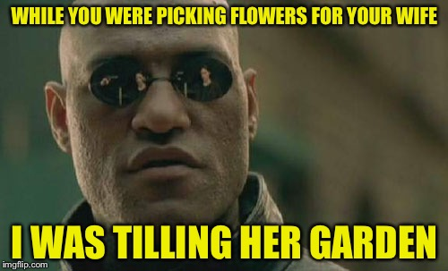 Scumbag Gardener Morpheus | WHILE YOU WERE PICKING FLOWERS FOR YOUR WIFE I WAS TILLING HER GARDEN | image tagged in memes,matrix morpheus,scumbag | made w/ Imgflip meme maker