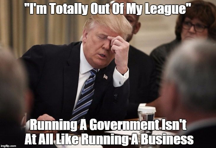 """""""I'm Totally Out Of My League"""" Running A Government Isn't At All Like Running A Business   made w/ Imgflip meme maker"""