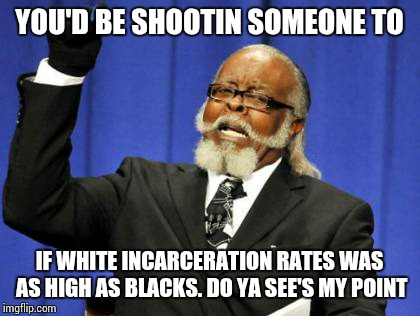 Too Damn High Meme | YOU'D BE SHOOTIN SOMEONE TO IF WHITE INCARCERATION RATES WAS AS HIGH AS BLACKS. DO YA SEE'S MY POINT | image tagged in memes,too damn high | made w/ Imgflip meme maker