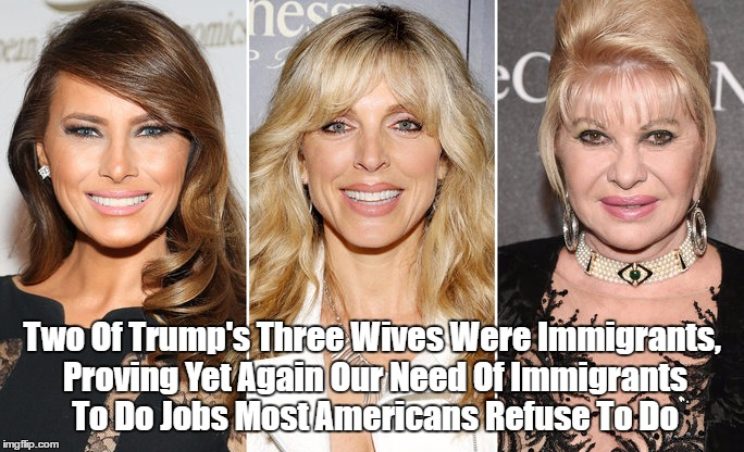 Two Of Trump's Three Wives Were Immigrants, Proving Yet Again... | Two Of Trump's Three Wives Were Immigrants, Proving Yet Again Our Need Of Immigrants To Do Jobs Most Americans Refuse To Do | image tagged in trump's immigrant wives,trump's three wives,trump's divorces | made w/ Imgflip meme maker