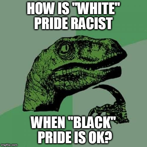 "If you're white, be proud of your ethnicity, not colour, but.... | HOW IS ""WHITE"" PRIDE RACIST WHEN ""BLACK"" PRIDE IS OK? 