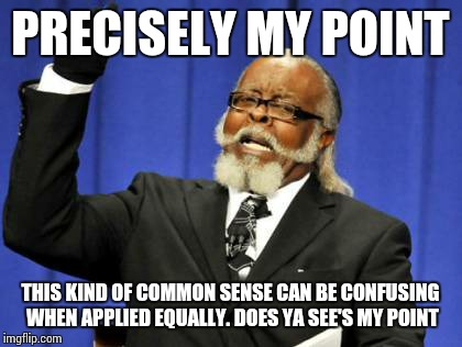 Too Damn High Meme | PRECISELY MY POINT THIS KIND OF COMMON SENSE CAN BE CONFUSING WHEN APPLIED EQUALLY. DOES YA SEE'S MY POINT | image tagged in memes,too damn high | made w/ Imgflip meme maker
