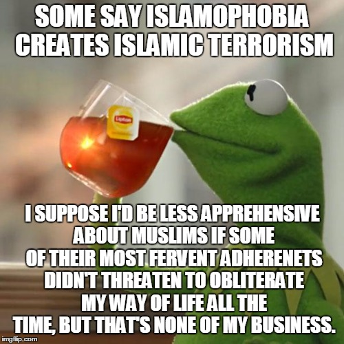 Reform Your Own, Then We'll Talk | SOME SAY ISLAMOPHOBIA CREATES ISLAMIC TERRORISM I SUPPOSE I'D BE LESS APPREHENSIVE ABOUT MUSLIMS IF SOME OF THEIR MOST FERVENT ADHERENETS DI | image tagged in memes,but thats none of my business,kermit the frog | made w/ Imgflip meme maker