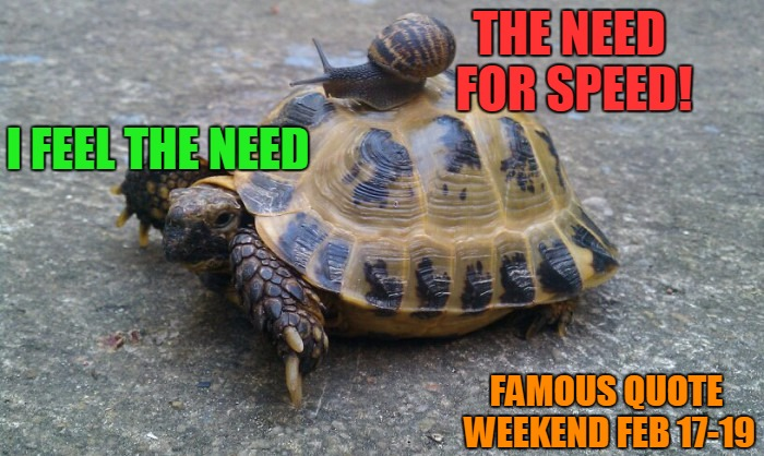 Famous Quote Weekend - Feb 17-19 | THE NEED FOR SPEED! I FEEL THE NEED FAMOUS QUOTE WEEKEND FEB 17-19 | image tagged in snail riding turtle,famous quote weekend,feb 17-19,top gun,the need for speed,not gonna back down | made w/ Imgflip meme maker