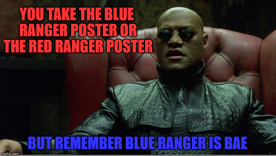 YOU TAKE THE BLUE RANGER POSTER OR THE RED RANGER POSTER; BUT REMEMBER BLUE RANGER IS BAE | image tagged in posters | made w/ Imgflip meme maker