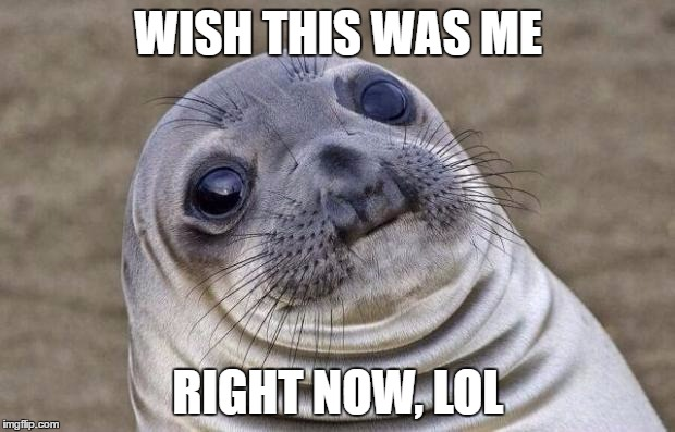 Awkward Moment Sealion Meme | WISH THIS WAS ME RIGHT NOW, LOL | image tagged in memes,awkward moment sealion | made w/ Imgflip meme maker