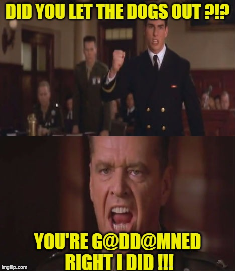 DID YOU LET THE DOGS OUT ?!? YOU'RE G@DD@MNED RIGHT I DID !!! | made w/ Imgflip meme maker
