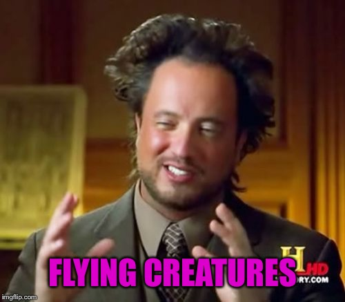 Ancient Aliens Meme | FLYING CREATURES | image tagged in memes,ancient aliens | made w/ Imgflip meme maker