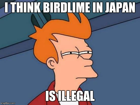 Futurama Fry Meme | I THINK BIRDLIME IN JAPAN IS ILLEGAL | image tagged in memes,futurama fry | made w/ Imgflip meme maker