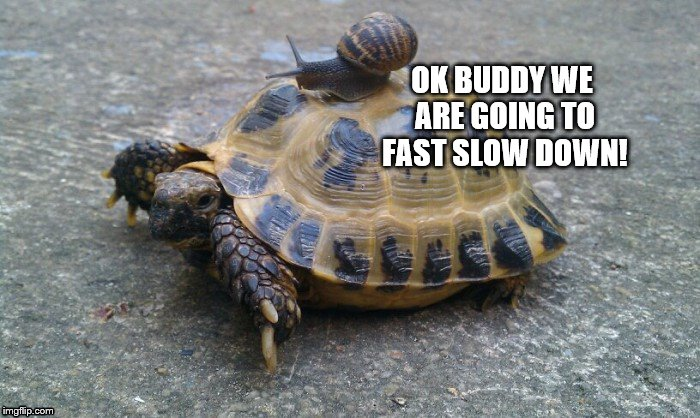 OK BUDDY WE ARE GOING TO FAST SLOW DOWN! | made w/ Imgflip meme maker