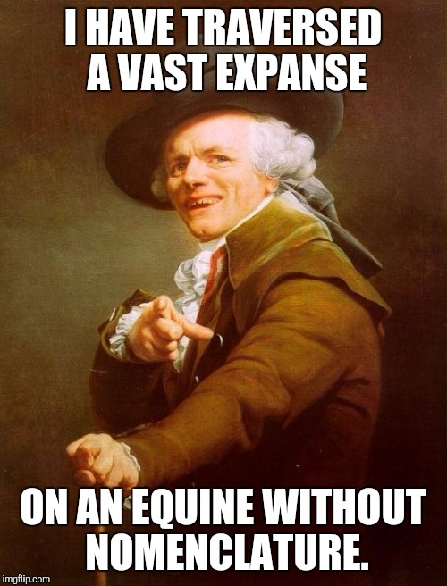 Joseph Ducreux Meme | I HAVE TRAVERSED A VAST EXPANSE ON AN EQUINE WITHOUT NOMENCLATURE. | image tagged in memes,joseph ducreux | made w/ Imgflip meme maker