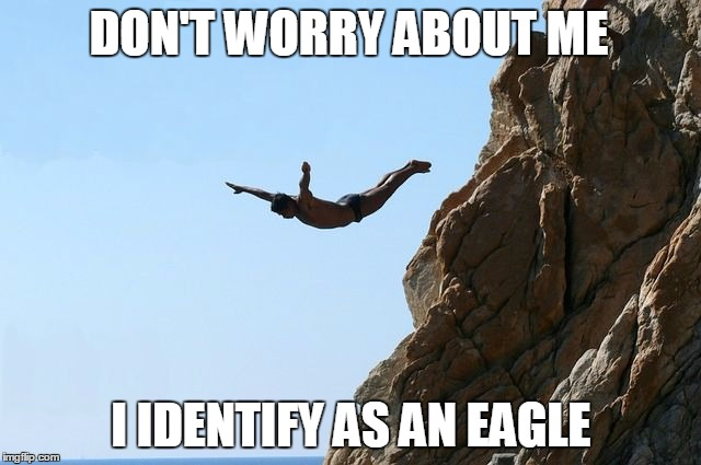 DON'T WORRY ABOUT ME I IDENTIFY AS AN EAGLE | image tagged in jumping off a cliff | made w/ Imgflip meme maker