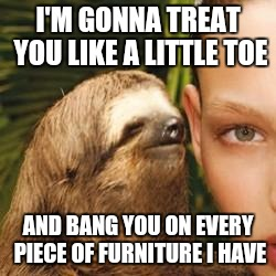 rape sloth | I'M GONNA TREAT YOU LIKE A LITTLE TOE AND BANG YOU ON EVERY PIECE OF FURNITURE I HAVE | image tagged in rape sloth | made w/ Imgflip meme maker