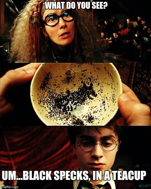 harry potter | WHAT DO YOU SEE? UM...BLACK SPECKS, IN A TEACUP | image tagged in harry potter | made w/ Imgflip meme maker
