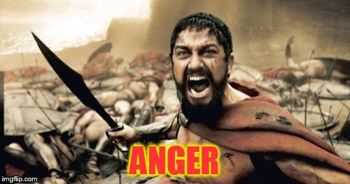 Sparta Leonidas Meme | ANGER | image tagged in memes,sparta leonidas | made w/ Imgflip meme maker