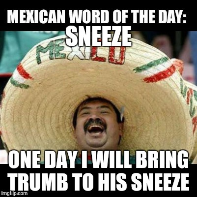 Armeggedon is on!!! | SNEEZE ONE DAY I WILL BRING TRUMB TO HIS SNEEZE | image tagged in mexican word of the day,trump,the wall,the berlin walll | made w/ Imgflip meme maker