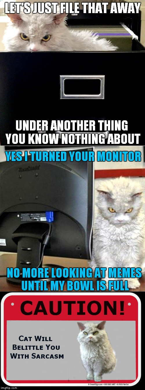 LET'S JUST FILE THAT AWAY UNDER ANOTHER THING YOU KNOW NOTHING ABOUT YES I TURNED YOUR MONITOR NO MORE LOOKING AT MEMES UNTIL MY BOWL IS FUL | made w/ Imgflip meme maker