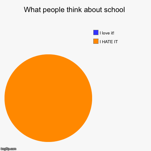 So... Dam... TRUE | What people think about school | I HATE IT, I love it! | image tagged in funny,pie charts,school | made w/ Imgflip pie chart maker