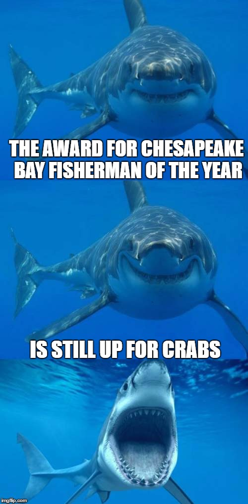 Fisherman of the year | THE AWARD FOR CHESAPEAKE BAY FISHERMAN OF THE YEAR IS STILL UP FOR CRABS | image tagged in bad shark pun,jaws,crabs,fishing,chesapeake bay,memes | made w/ Imgflip meme maker