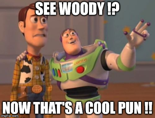 X, X Everywhere Meme | SEE WOODY !? NOW THAT'S A COOL PUN !! | image tagged in memes,x,x everywhere,x x everywhere | made w/ Imgflip meme maker