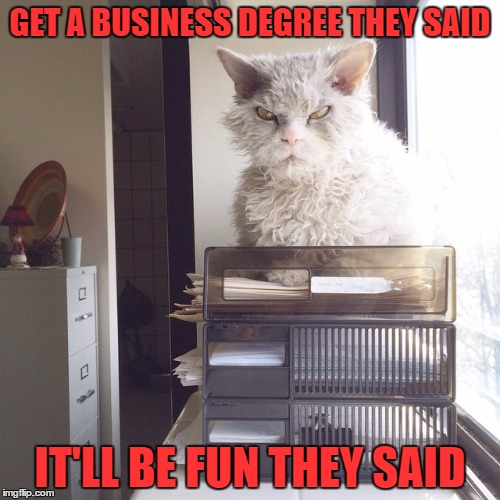 GET A BUSINESS DEGREE THEY SAID IT'LL BE FUN THEY SAID | image tagged in pompus at the office | made w/ Imgflip meme maker